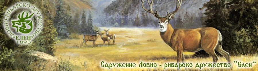 Сдружение ЛРД Елен - гр. Кюстендил - Сдружение Елен - Кюстендил